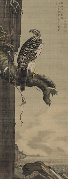 小田野直武の画像 p1_24